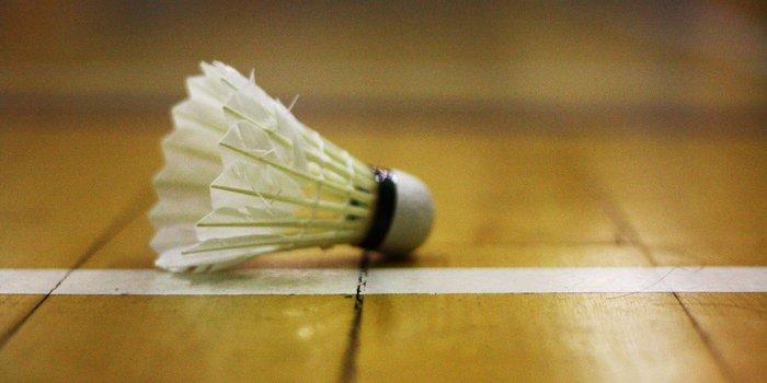 Activité annexe badminton