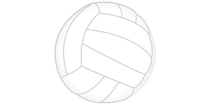 Activité annexe volley-ball